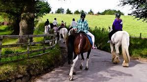Horse & Pony Trekking